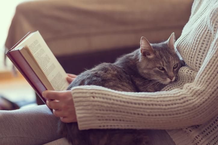 Varför bär katten hem bytet?